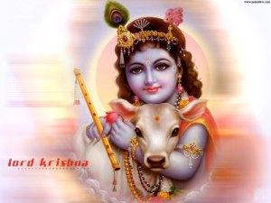 lord_krishna2