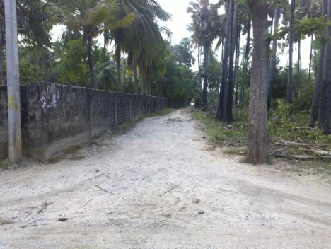 road 5